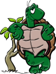 amphibian-1297728_1280