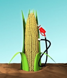 All is not what is seems when it comes to ethanol and providing an alternative energy source.