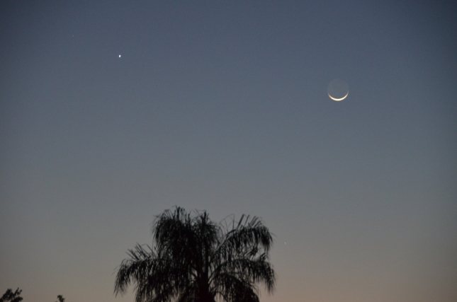 Crescent moon w:Venus