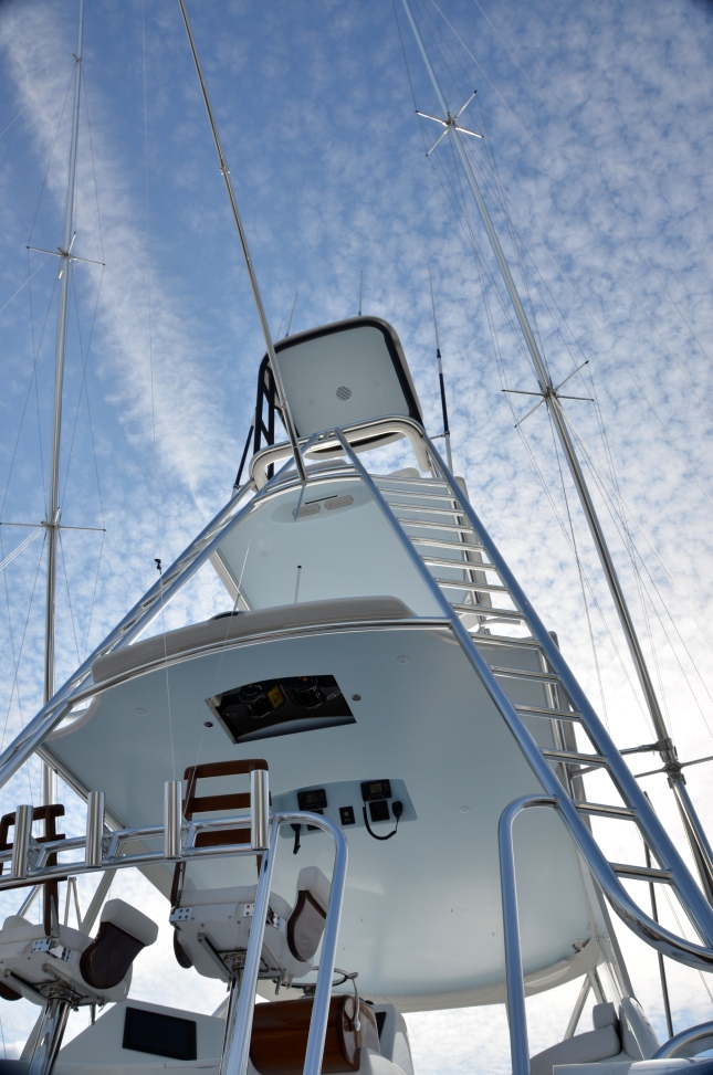 A full Pipewelders tower gives both captain and guests a lofty all around view.